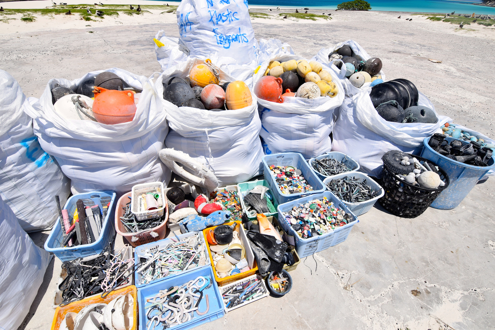Midway, Atoll, Island, Northwestern, Hawaiian, beach, clean up, marine, debris, plastic, nets, floats, fishing, removal, oyster spacers, toothbrush, hardhats, umbrella handles, pens, bottle caps, life rings, bottles, baseballs, eel cone traps, lighters