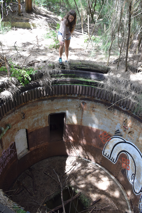 Hawaii, Oahu, Battery, Bunker,reservation, Wilridge, Lewis S. Kirkpatrick, Wili, Wiliwilinui, WW, II, 2, WWII, two, world war, ruins, military, army, coastal, defense, exploring, discovering, hiking, forest, jungle, secret, abandoned, hidden, Steel, Barbette, Turret, 8-inch, gun, USS Lexington
