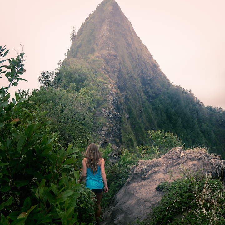Hawaii, Oahu, Hike, Trek, Cliff, Koolau, Mountain, Ridge, Island, Razor back, Pali, lookout, puka, Pali Puka, beautiful, girl, woman, scenery, view