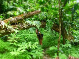Hawaii Oahu Jungle Fern Princess Girl Fairy