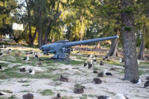 5, five, inch, gun, weapon, canon, Midway, Atoll, Island, Hawaii, archipelago, WWII, WW2, world war, II, 2, two, albatross, relic, war, artifact