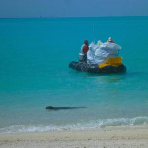 perfect, beach, beautiful, ocean, sea, water, turquoise, Midway, Atoll, Island, Hawaii, archipelago, WWII, WW2, world war, II, 2, two, relic, war, artifact, marine debris, monk, seal, zodiac, clean, up