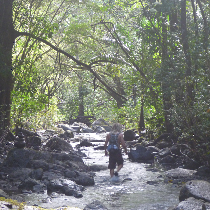 Kalauao, Falls, Aiea, Loop, Trail, junction, Oahu, Hawaii, Hike, Explore, Adventure, stream, river, creek, wet shoes