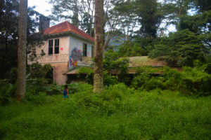 Haunted, house, manor, plantation, home, mansion, abandoned, forest, jungle, Maunawili, Oahu, Hawaii, Ranch, Boyd, Irwin, Creepy, Scary, overgrown