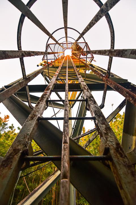 Hawaii, Oahu, Adventure, Explore, Hike, Forest, Jungle, Trail, Koolau, Mountains, Tantalus, Sunset, hawaiifunshine, radio tower, phone tower, the tower