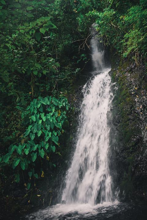 Upper, Waihe'e, Falls, Hike, Oahu, Hawaii